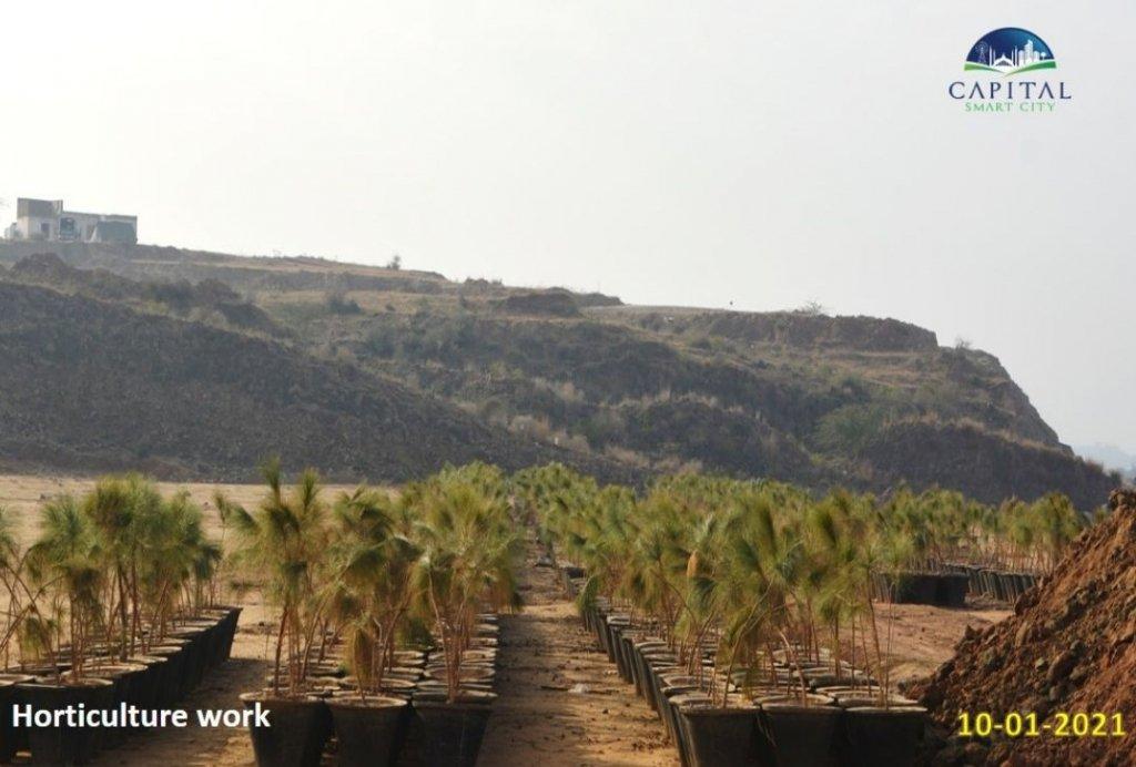 horticulture work-capital smart city