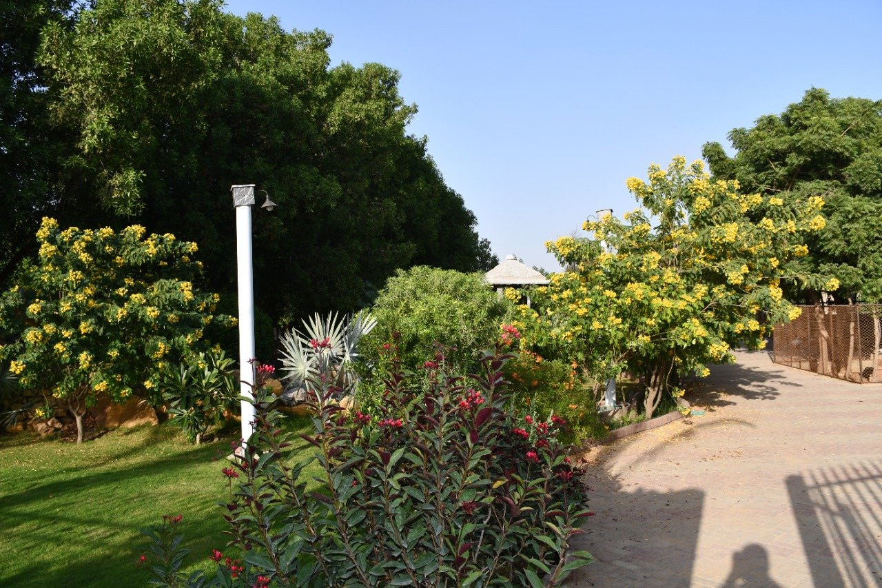 horticulture - development update -The Gardens Residences